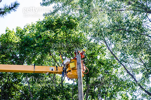 Electrician installing power cable on pole