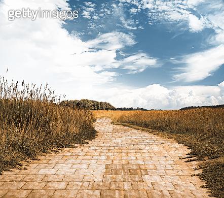 yellow brick road, fantasy background