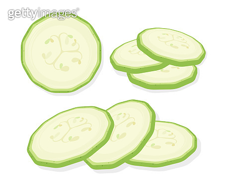 Fresh marrow vegetables sliced slices isolated on white background. Rings of zucchini. Vector Illustration.