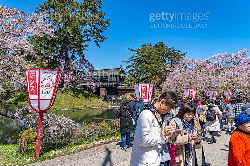 Hirosaki city Cherry blossom festival in spring season sunny day