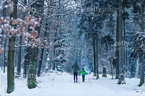 Unrecognizable father and son skiing in the woods