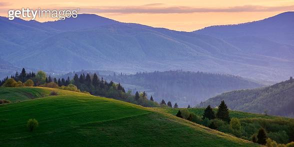mountainous countryside in springtime at dusk