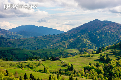 green fields rural landscape