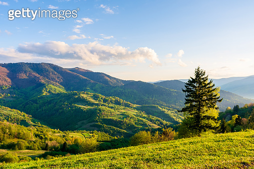 wonderful rural landscape in mountains at sunset