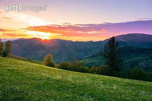 rural landscape in mountains at dusk
