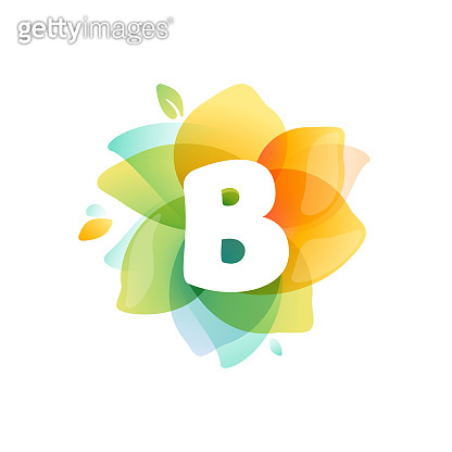B letter logo at colorful watercolor flower.