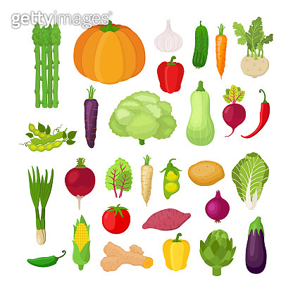 Vector vegetables set. Organic vegetables. Vegetarian concept.