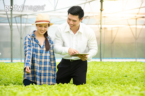 Businessman using digital tablet with 5g technology system check quality of hydroponic organic vegetable farm with asian beautiful woman farmer in greenhouse