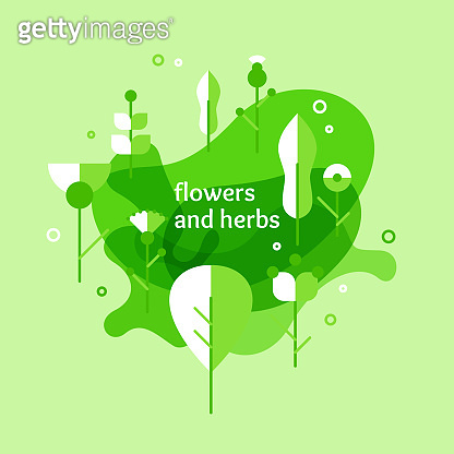 Vegetation background. Elements for design poster. Various plants and flowers on the field.
