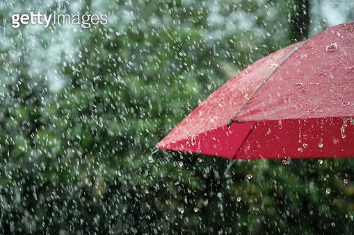 Close up of umbrella in the rain