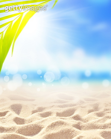 Summer sand beach background. Palm leaf, sea and sky. Summer concept.