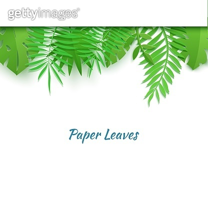 Horizontal top border of summer tropical leaves in paper cut style. Craft jungle plants collection on white background. Creative vector card illustration in paper cutting art style.