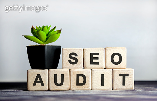 Seo audit link - concept on a Wooden background, cubes and flower in a pot.