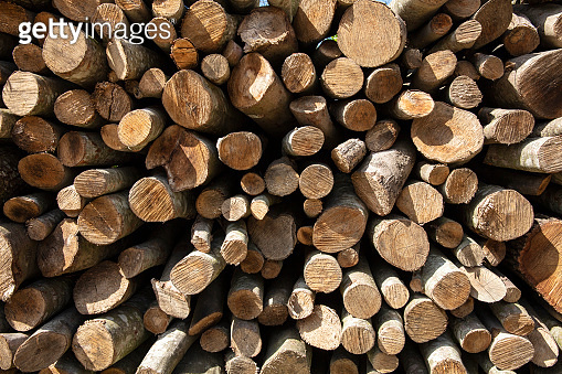 Piles of wood