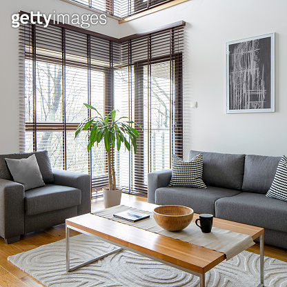 Stylish living room with gray furniture