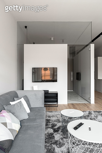 Living room with decorative glass wall