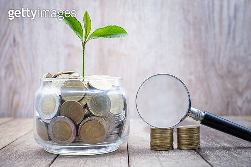 Seedlings on a coin in a glass jar and a magnifying glass placed on a pile of coins The growth concept of the coin deposit business Banking and Investment Business Search for investment guidelines.