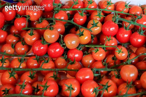 Vine Tomatoes in Borough Market, London