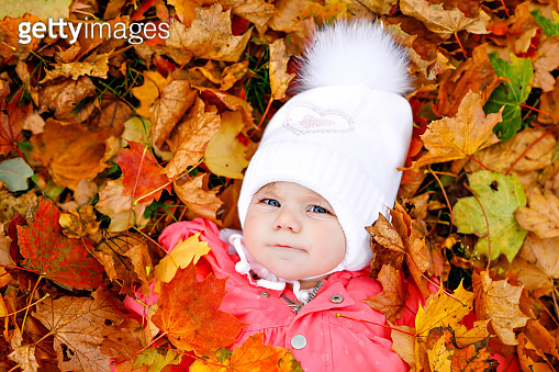 Adorable little baby girl in autumn park on cold october day with oak and maple leaf. Fall foliage. Family outdoor fun in fall. child smiling. Healthy baby with warm fall clothes.
