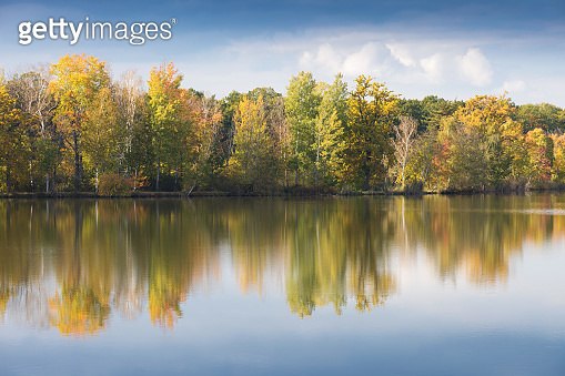Nature rural pond water in autumn landscape Beautiful lake in the background of colorful forest. Romantic place for holidays. Romantic reflection.
