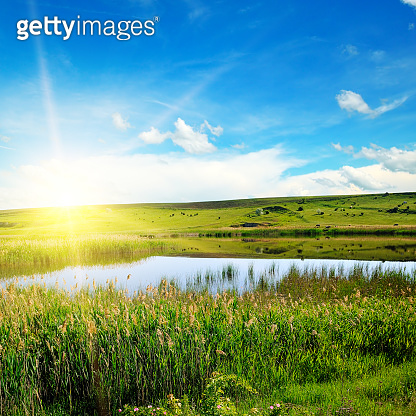 A picturesque lake overgrown with reeds. In the blue sky a bright sunrise.