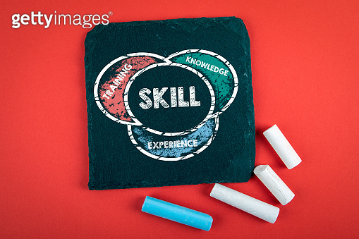 SKILL. Training, Knowledge and Experience concept. Text on a stone surface