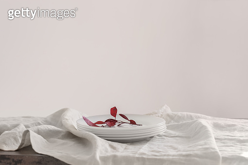 Stack of clean plates on table against light background