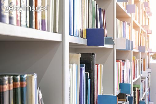 Many books on shelves in modern library