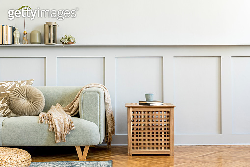 Minimalistic composition of living room with design sofa, coffe table, plant, books, decoration, pillows, plaid, carpet, wood paneling and elegant persoanl accessories in stylish home decor.