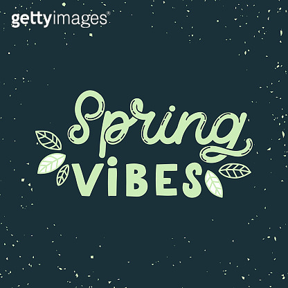 Hand drawn lettering card. The inscription: Spring vibes. Perfect design for greeting cards, posters, T-shirts, banners, print invitations.Monoline style.