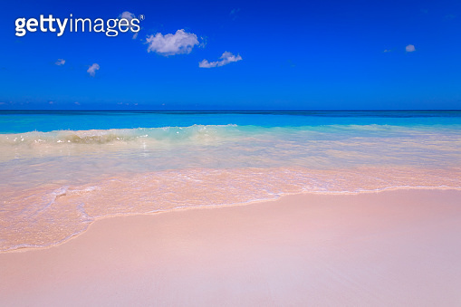 Idyllic Turquoise and secluded Beach in Saona Island – Punta Cana, Caribbean Sea