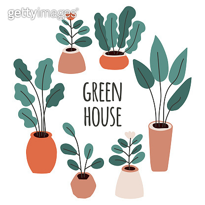 Cute home gardening frame background, trendy hand drawn plants in pots in simple flat style