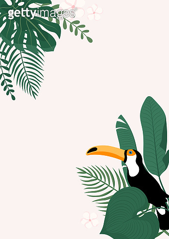 Modern vertical banner with tropical leaves and Toucan bird. Tropical poster template. Vector cover design.