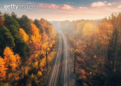 Aerial view of beautiful railroad in autumn forest in foggy sunrise. Industrial landscape with railway station, sky, trees with orange leaves, fog and sun rays. Top view of rural railway platform