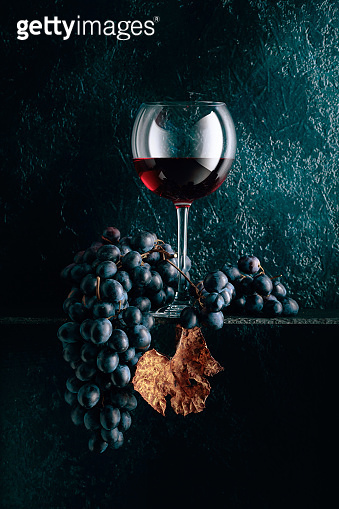 Glass of red wine and blue grapes with dried up vine leaves on an old dark blue background.