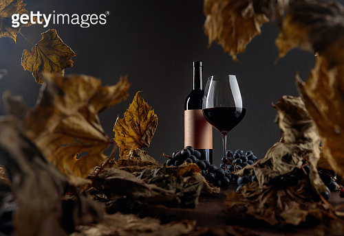 Red wine on a table with dried vine leaves and blue grapes.