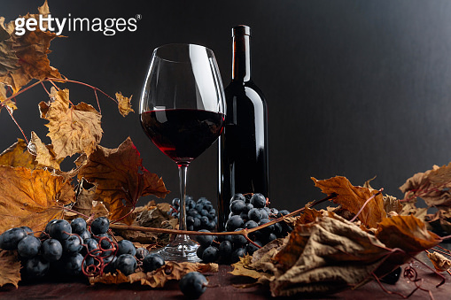 Bottle and glass of red wine on a table with dried vine leaves and blue grapes.
