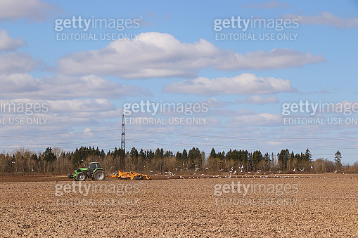 Russia, Leningrad Oblast,  the beginning of the sowing season.