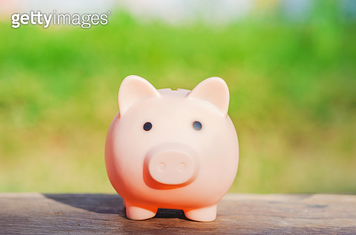 money saving for business investment finance and banking concept. piggy bank and row of coin stack on wood table and green blur nature background.
