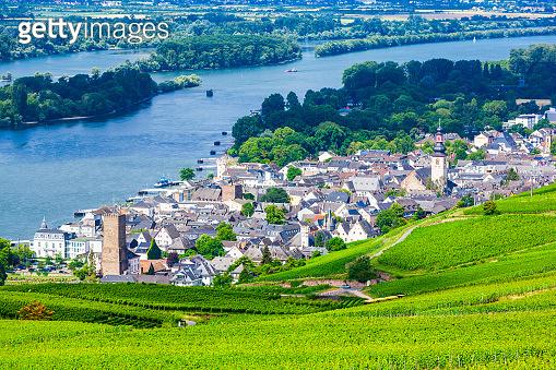 Rudesheim am Rhein Vineyards, Germany