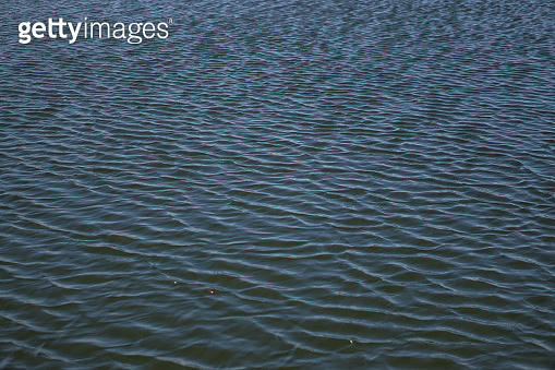 Beautiful surface of the water of the river and lake. Pond and waves from the wind in nature. Background for your design.