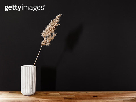 Reed in a white marble vase on a wooden table against black wall. Interior minimal background, copy space.