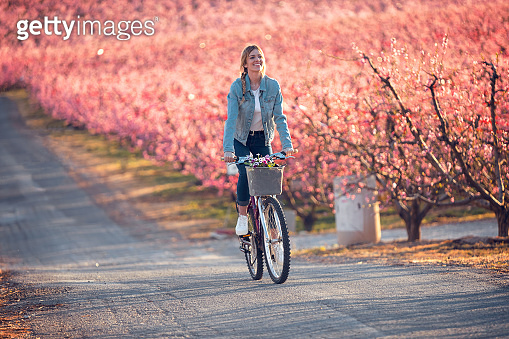 Pretty young woman riding with a bike in cherry field in springtime.