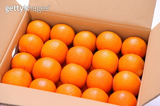citrus tankan in a carton box