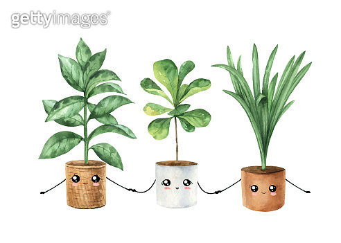 Watercolor vector cute cartoon houseplant in pots with funny happy face. Kawaii potted plants. Hand painted illustration for decor, postcards, invitations, kitchen, home and gardening. Decorative greenery collection isolated on white background.