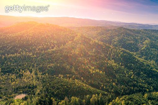 Mountains ridge at sunset light. Beautiful nature landscape. Europe, Carpathian mountains
