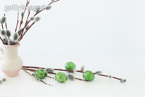 Easter eggs with spring branches willow on white background