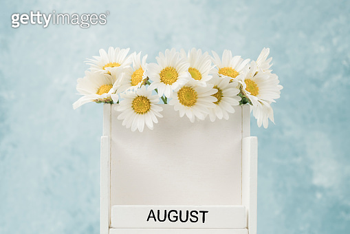 White cube calendar for august decorated with daisy flowers