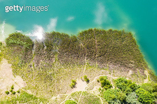 reed on the quarry lake shore. aerial photography