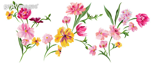 Botanical floral set. Hand drawn abstract meadow fantasy flowers collection isolated on white. Summer floral bouquets.